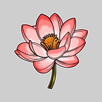 Ilustración de vector de flor de loto aislado