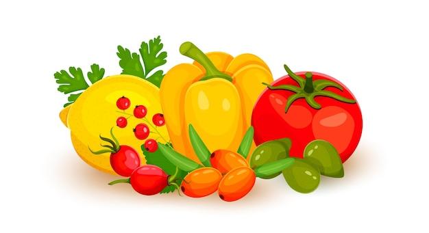 Ilustración de vector de fuente de alimento de vitamina c. alimentos que contienen ácido ascórbico. frutas y verduras limón, pimiento, tomate, espino amarillo, grosella roja, ciruela cacatúa, rosa silvestre. ilustración vectorial