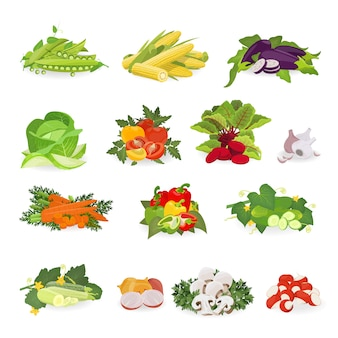 Ilustración de vector con set vegetal. comida sana.