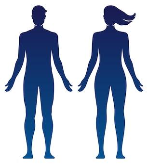 Ilustración de vector de silueta de cuerpo de hombre y mujer