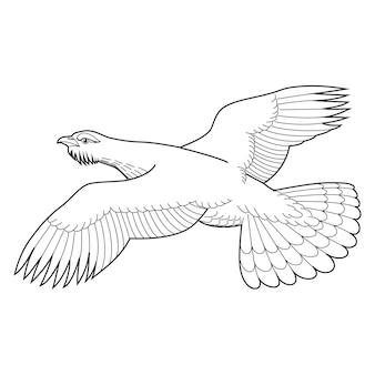 Ilustración de vector de urogallo de madera para su diseño dibujo a mano aislado en blanco