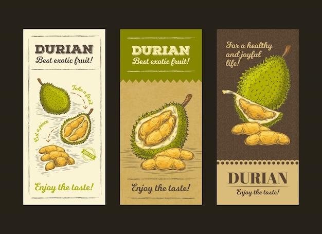 Ilustración vectorial en el diseño de embalaje para la fruta durian, plantilla, moc hasta