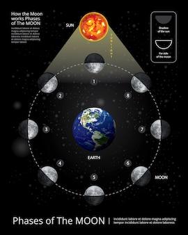 Ilustración vectorial de las fases de la luna