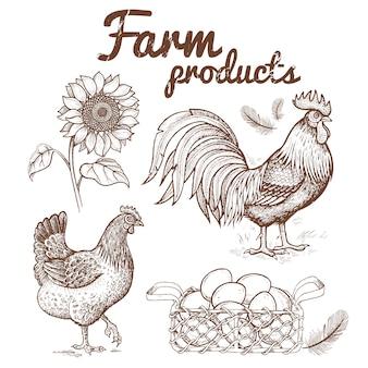 Ilustración vectorial de un gallo, pollo y canasta con huevos,