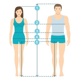 Ilustración vectorial de hombre y mujeres en longitud completa con líneas de medición de parámetros corporales. medidas de tallas hombre y mujer. mediciones y proporciones del cuerpo humano. diseño plano.