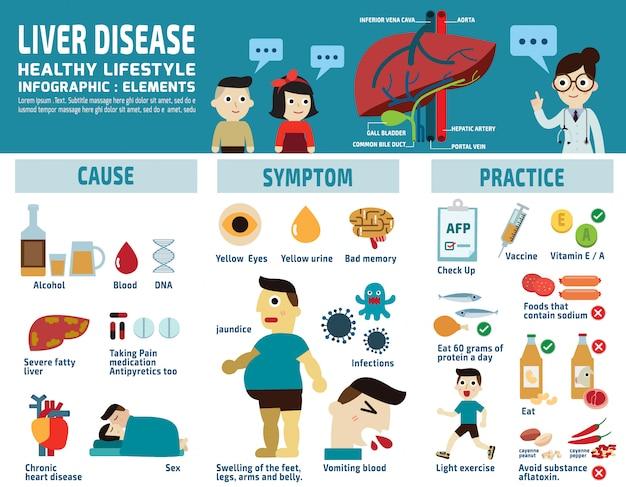 Ilustración vectorial infografía del hígado