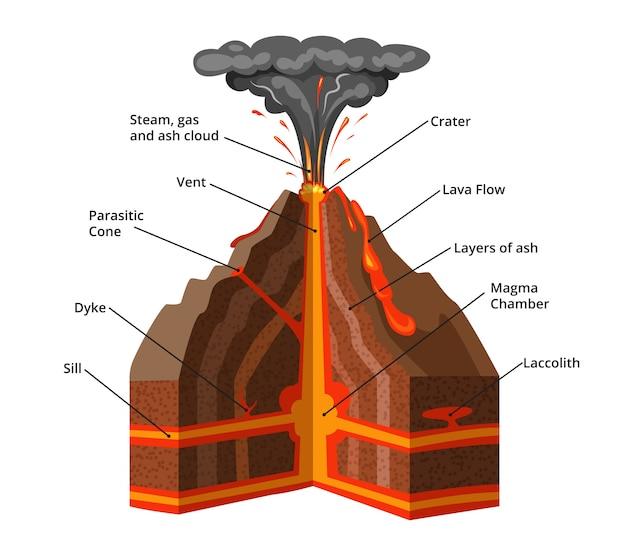 Ilustración vectorial infografía. seccion transversal del volcan