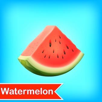 Ilustración vectorial de melón de agua