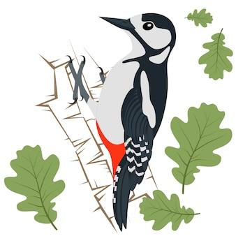 Ilustración vectorial de pájaro carpintero