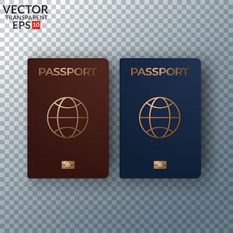Ilustración vectorial pasaporte internacional con mapa aislado