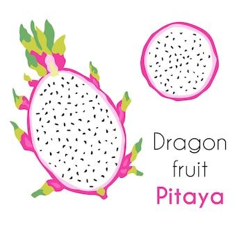 Ilustración de verano de pitaya de frutas tropicales exóticas.