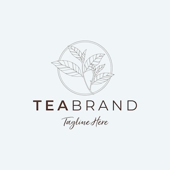Ilustraciones minimalistas de logotipo de hoja de té