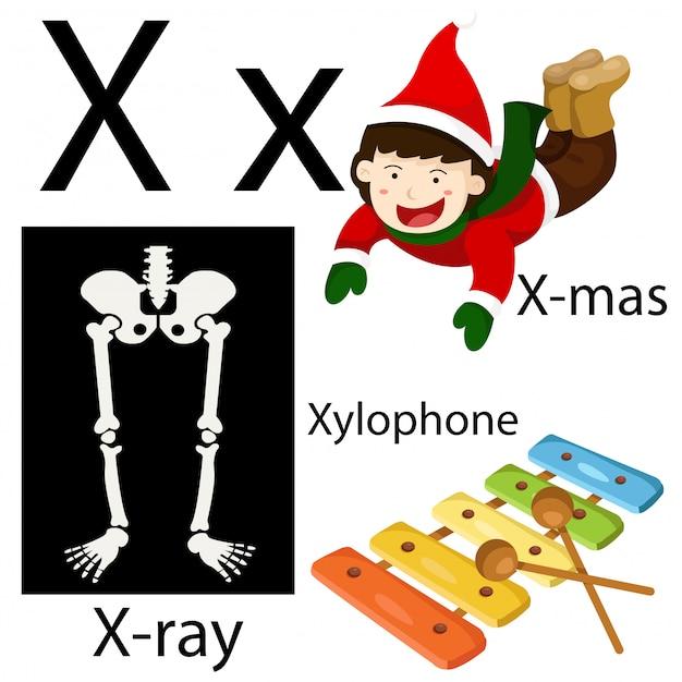 Ilustrador del alfabeto x