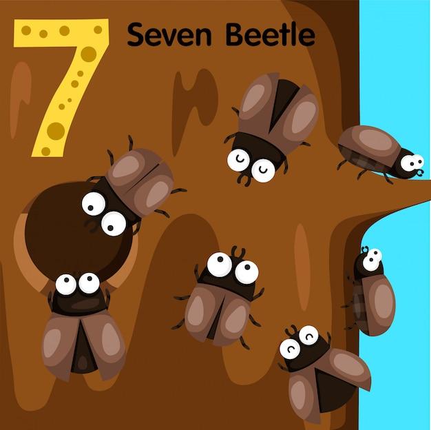 Ilustrador del escarabajo número siete.