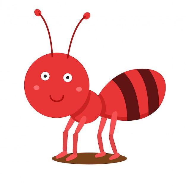 Ilustrador de hormiga linda animal.