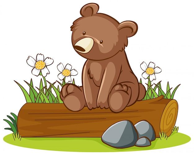 Imagen aislada de oso lindo