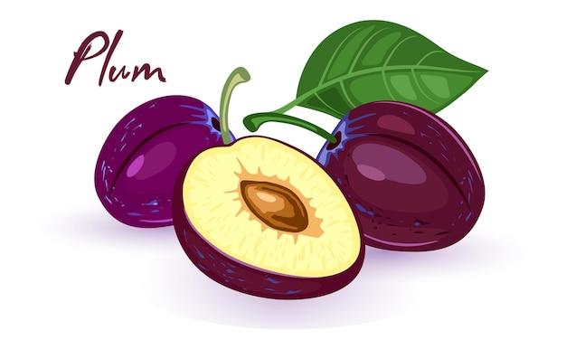 La imagen muestra ciruelas púrpuras maduras enteras y cortadas con hueso marrón y hojas verdes sobre fondo blanco.