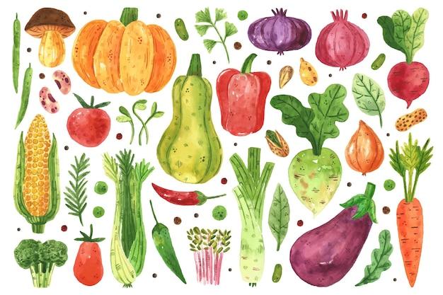 Imágenes prediseñadas de verduras, juego. ilustración de acuarela. comida sana fresca cruda.