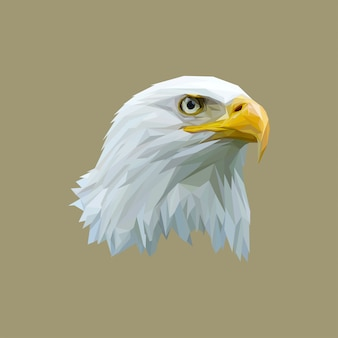Impresionante low poly art eagle