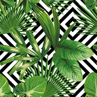 Imprimir verano exótico planta de selva tropical hojas de palma modelo, vector floral inconsútil en el fondo geométrico blanco negro. fondo de pantalla de la naturaleza.