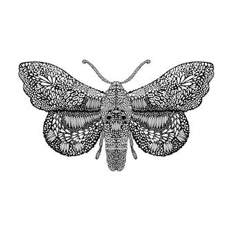 Increíble ilustración de mariposa mosca