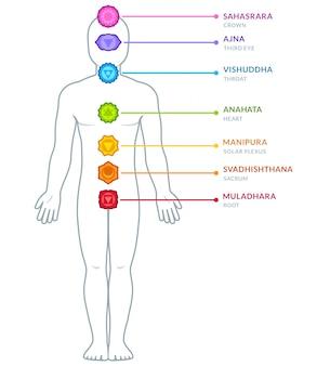 Infografía de chakras de cuerpo masculino