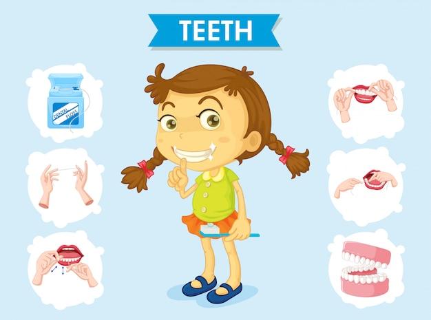 Infografía científica médica del cartel del cuidado de los dientes.