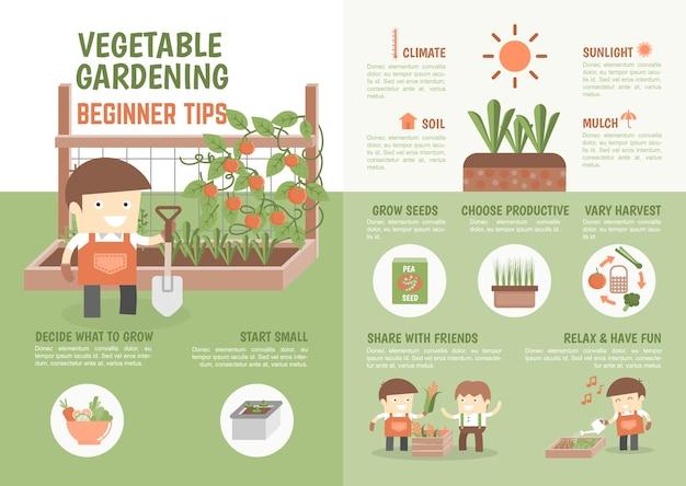 Infografía cómo cultivar consejos para principiantes vegetales