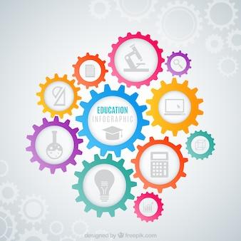 Infografía de educación con engranaje de colores