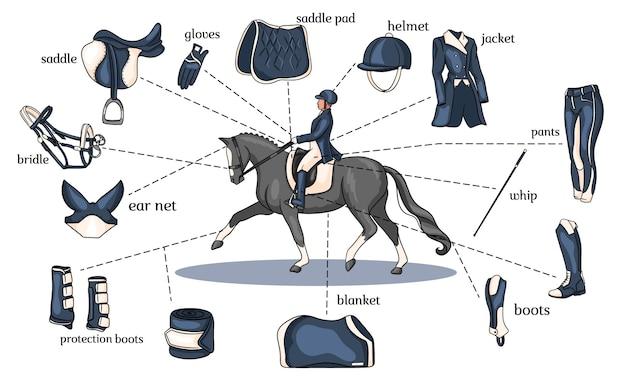 Infografía de deporte ecuestre arnés de caballo y equipo de jinete en el centro de un jinete sobre un caballo en estilo de dibujos animados.