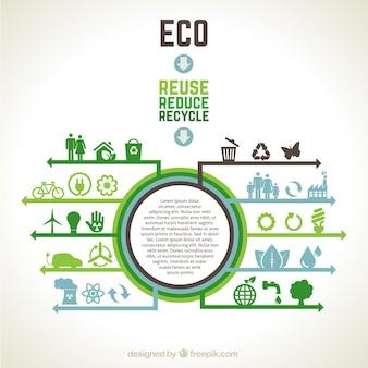Infografía ecológica vector gratuito