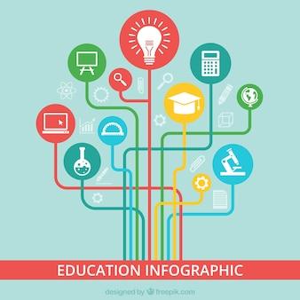 Infografía de educación de colores