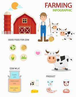 Infografía de granja de vacas, ilustración