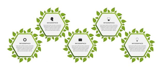 Infografía con hexágonos y hojas.