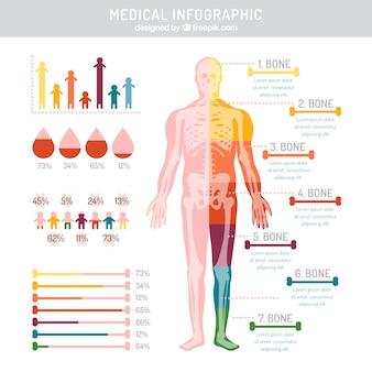 Infografía médica de colores