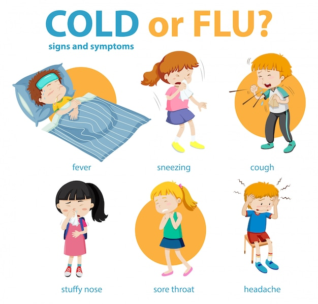 Infografía médica de síntomas de resfriado o gripe.