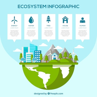 Infografía moderna de ecosistema con diseño plano