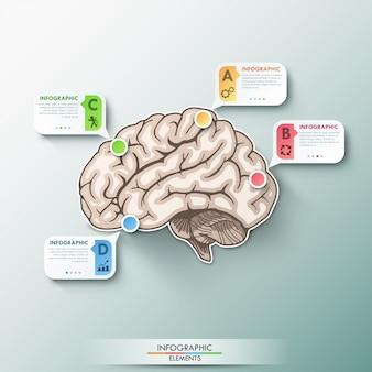 Infografía moderna plantilla de cerebro de papel para 4 opciones