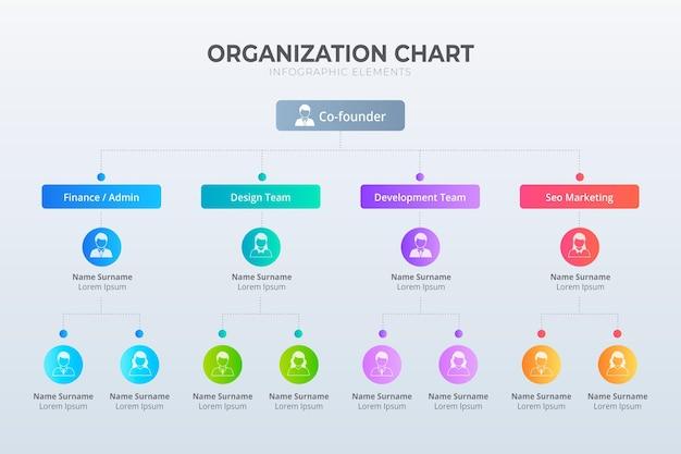 Infografía de organigrama degradado