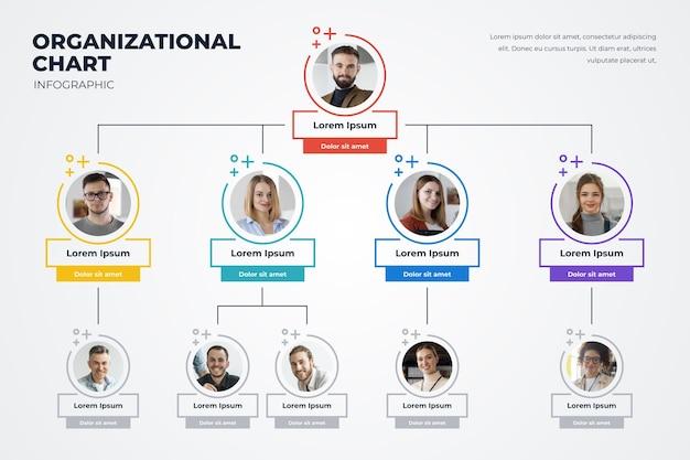 Infografía de organigrama plano lineal con foto