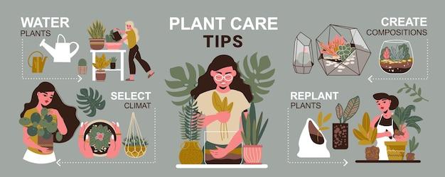 Infografía de plantas caseras con ilustración de macetas