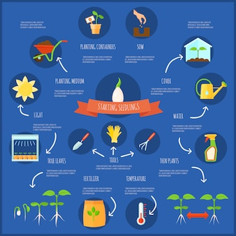 Infografía de plántulas con símbolos de riego y temperatura, ilustración vectorial plana