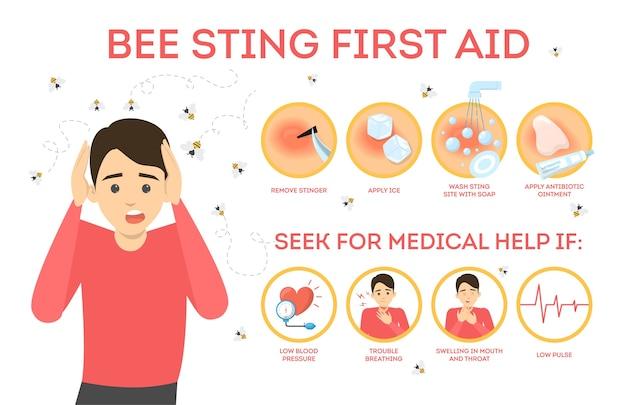 Infografía de primeros auxilios de picadura de abeja. quite la picadura de la piel, zona dolorida. ayuda médica. ilustración en estilo de dibujos animados