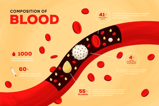 Infografía de sangre dibujada a mano
