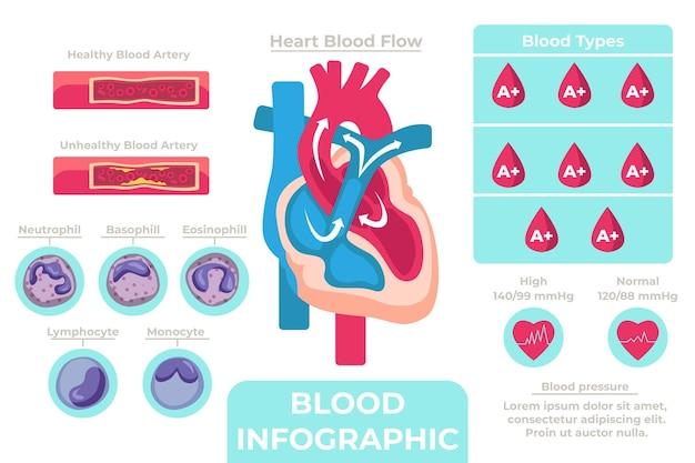 Infografía de sangre lineal con elementos ilustrados.