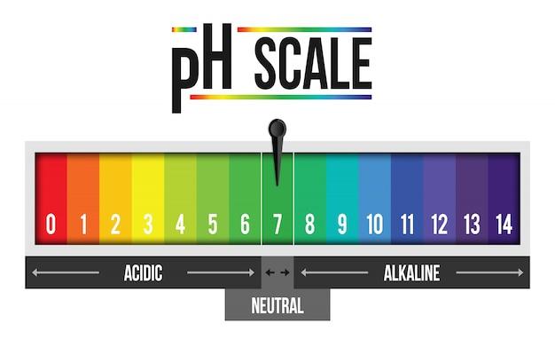 Infografía de valor de escala de ph