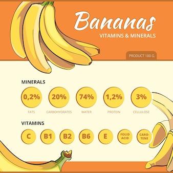 Infografía de vector de plátano y vitaminas. información sobre alimentos, nutrición fresca e ilustración de salud.