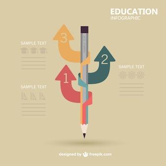 Infografía vectorial sobre educación
