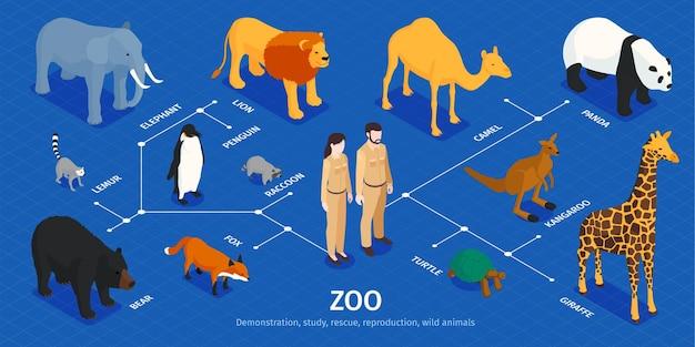 Infografía de zoológico isométrica con personajes humanos aislados, animales exóticos de varias zonas climáticas e ilustración de leyendas de texto