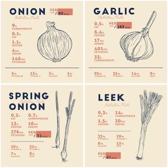 Información nutricional de cebolla, ajo, cebolleta y puerro. bulbos vegetales, dibujo a mano alzada